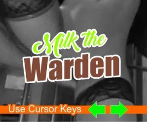 The Warden by Flexton version 0.1.0