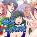Big Dick At The Beach (Final)